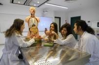 CELAL BAYAR - Daha Sağlıklı Eller İçin Doktorlara Kurs