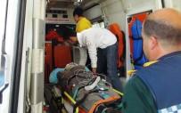YAYLAK - At Arabasından Düşen Çiftçi Yaralandı