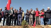 AKÇAKIRAZ - Elazığ'da Zeytin Dalı Harekatı'na Türk Bayraklı Destek