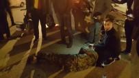 Isparta'da Trafik Kazası Açıklaması 1 Yaralı