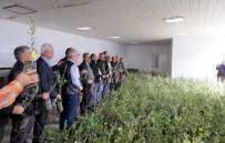Marmarabirlik 7 Bin Zeytin Fidanı Dağıttı