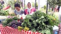 DEFİLE - Muğla'da 'Ot Şenliği'