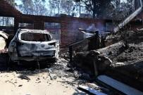 AVUSTRALYA - Avustralya Orman Yangınlarıyla Alarmda