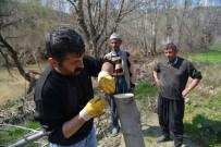 Büyükşehir Belediyesi 7 Bin 700 Meyve Ağacını Aşılayacak