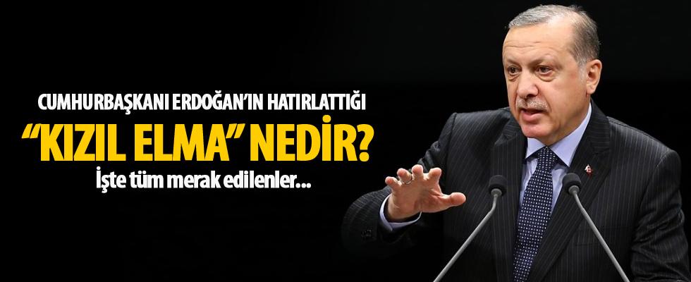 Cumhurbaşkanı Erdoğan'ın hatırlattığı 'Kızıl Elma' nedir?