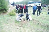 NURI ÖZDER - Edirne'de Yüzlerce Öğrenci Gazi Ve Şehitler İçin Fidan Dikti