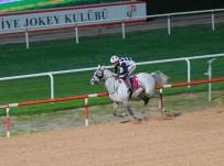 HIPODROM - Seyhan Belediye Başkanlığı Koşusu Kupası 2. Kez 'Enderefe'nin