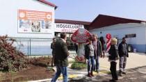 GÜNEY KORE - Yalova'da 'Mantar Üretimi Mükemmeliyet Merkezi' Açıldı
