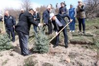 EMNİYET MÜDÜRÜ - Yozgat'ta 700 Fidan Toprakla Buluştu