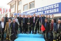MEHMET TAHMAZOĞLU - Başkan Tahmazoğlu'ndan Çiftçilere 500 Bin Adet Zeytin Fidanı