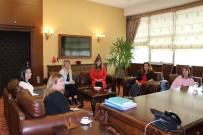 ALI ER - Bilinçli Ve Mutlu Kadınlar İçin Ortak Projeler Başlıyor
