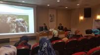 SÜT ÜRETİMİ - Bozkırda Temiz Süt Üretimi Projesi Başladı