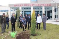 TAFLAN - Bucak Devlet Hastanesi Bahçesi Yeşillendiriliyor