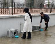 AYETLER - Hayvan Gönüllüsü Gençler 'İyilikte' Yarıştı