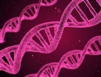 MINYATÜR - Kanser tedavisinde DNA nanorobotları devrede