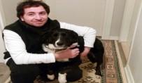 TAFLAN - Köpeğin Havlamasını Bahane Edip Öldürmekle Tehdit Ettiler