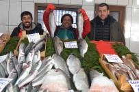 BALIK FİYATLARI - Tezgahlarda Balık Fiyatları Düşmüyor