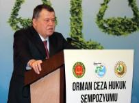 ORMAN GENEL MÜDÜRLÜĞÜ - Yargıtay Başkanı Cirit'ten, Teröristlerin İade Edilmemesine Tepki