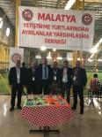 VERGİ DAİRESİ BAŞKANLIĞI - 'Benim İçin Oyna Dostluk Kazansın' Futbol Turnuvasında Grup Maçları Sona Erdi