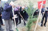 İL GENEL MECLİSİ - Dikmen Şehitler Ormanı'na Bin 100 Fidan
