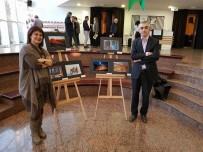 TÜRK TABIPLER BIRLIĞI - Manisalı Sağlıkçılar Ankara'dan Ödülle Döndü