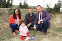 YOĞUN BAKIM ÜNİTESİ - Prematüre Bebeklerle Birlikte Fidan Diktiler