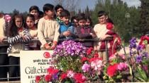 ŞEHİTLİKLER - Şehitlikte 'Değerler Eğitimi' Dersi