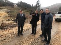 BOZÜYÜK BELEDİYESİ - Sofular Yaylası'na 20 Bin Sarı Çam Fidanı Dikilecek