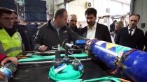 HAVA TAŞIMACILIĞI - Turkish Cargo, Canlı Çipurayı Umman'a Taşıdı