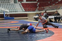 MUSTAFA ÇAKıR - Türkiye Genç Kadınlar Güreş Şampiyonası Yalova'da Başladı