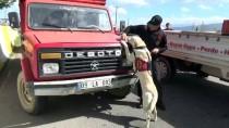 METAMFETAMİN - Aydın'da 'Huzur' Operasyonu