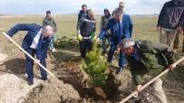 KÜRESEL İKLİM DEĞİŞİKLİĞİ - Başkan Özgökçe'den 'Dünya Ormancılık Günü' Mesajı