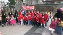 KROMOZOM - Düzce'de Down Sendromu Farkındalık Günü Yürüyüşü