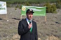 Kargı'da 250 Fidan Toprakla Buluşturuldu