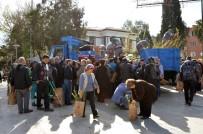 MERSIN - Milas'ta 8 Bin Fidan Dağıtıldı