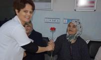 ŞEHİT ANNESİ - Pınarhisar Devlet Hastanesinde 'Yaşlılara Saygı Haftası' Çalışması