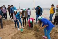 MEHMET KURT - Şehit Bülent Yurtseven Kampüsünde Ağaç Dikimi
