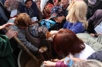 EZİLME TEHLİKESİ - Şifalı Mesir Kazanına Hücum Ettiler