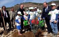 ORMAN GENEL MÜDÜRLÜĞÜ - Zeytinköy'e 64 Bin Adaçayı Fidanı