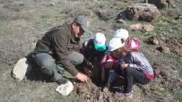 ORMAN İŞLETME MÜDÜRÜ - Aksu'da 500 Fidan Toprakla Buluştu