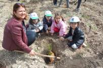 ORMAN İŞLETME MÜDÜRÜ - Akyar'da Ağaç Bayramı