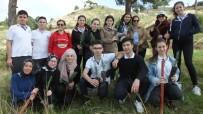 HÜSEYIN ÖNER - Burhaniye'de Hemşire Adayları Ağaç Dikti