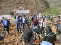 ORMAN İŞLETME MÜDÜRÜ - Fatsa'da 'Afrin Şehitleri Hatıra Ormanı' Kuruldu
