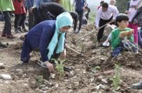 ORMAN İŞLETME MÜDÜRÜ - Hatay'da Ağaç Dostu Öğrenciler Bin 200 Fidanı Toprakla Buluşturdu