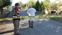 BAZ İSTASYONU - Jandarma, Hırsızı Tükürüğünden Yakaladı