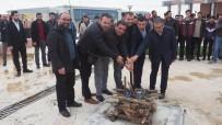 AHMET YILDIRIM - Kırklareli Üniversitesinde Nevruz Kutlandı