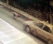 MEHMET UZUN - Köpeğe Çarpıp Kaçan Resmi Plakalı Aracın Sürücüsüne Soruşturma Açıldı