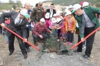 ÖĞRETMENLER - Niksar'da '15 Temmuz Şehitleri Hatıra Ormanı' Kuruldu