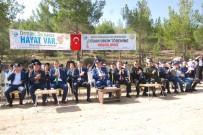 ORMAN İŞLETME MÜDÜRÜ - Silifke'de 2 Bin Fidan Toprakla Buluşturuldu
