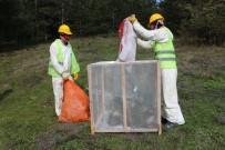 ÇAM KESE - Yığılca'da Orman Zararlıları İle Mücadele Yapıldı